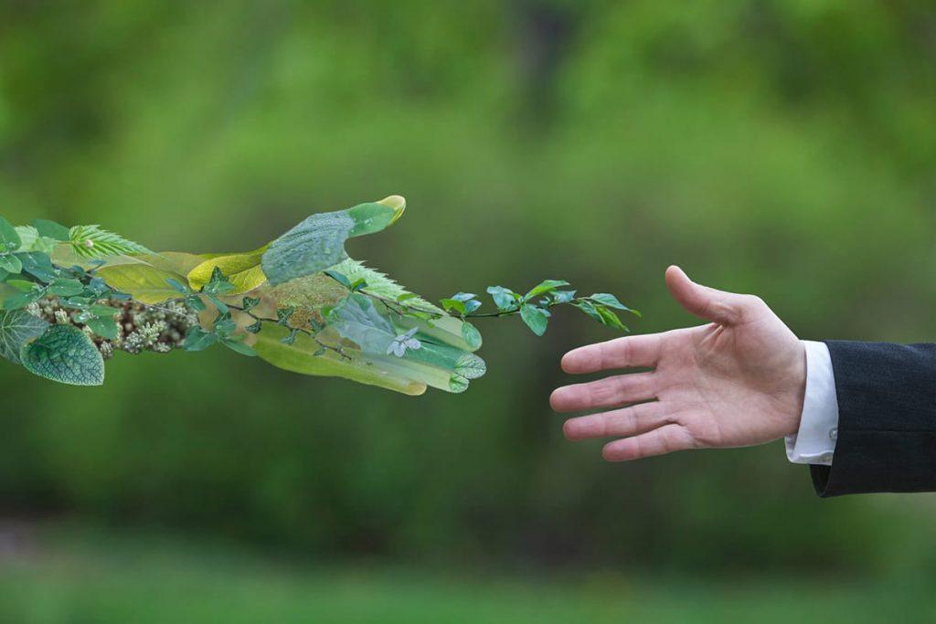 Economia e ambiente: cosa sono i Green Jobs?